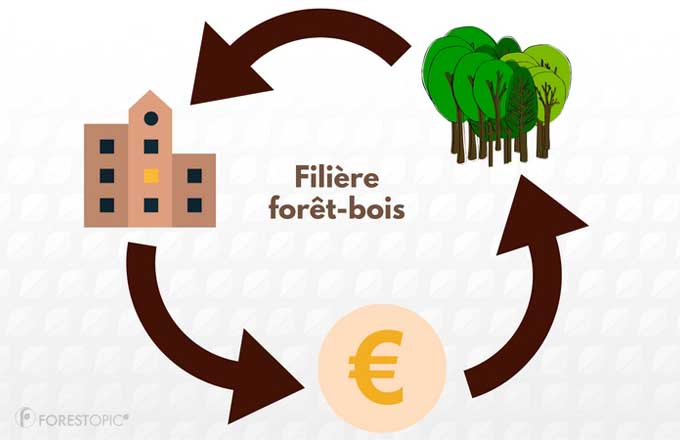 Financer la filiere foret-bois