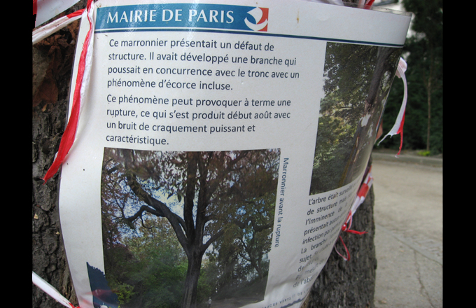 Information displayed by the municipality (photo: Forestopic)