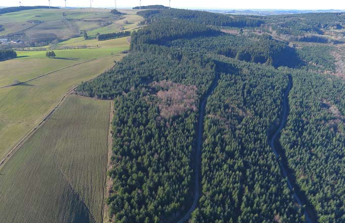 France Valley vient d'acquérir 450 hectares de forêts en Occitanie (crédit photo: France Valley)
