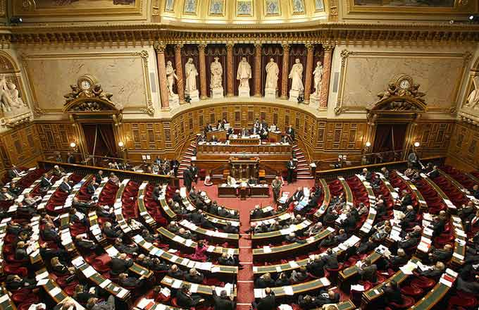 France: The Fate of the Forest Scrutinized by Senate