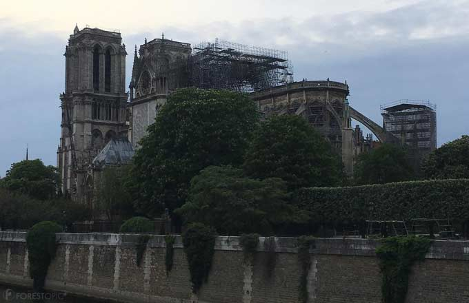 La cathédrale Notre-Dame de Paris, le 23 avril 2019 (crédit photo: Forestopic)